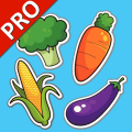 Vegetables Cards PRO Icon