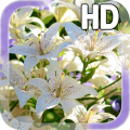 Lily Flower LWP Icon