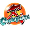 Z Champions - BETA Icon