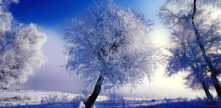 Winter Live Wallpaper HD apk