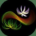 Magic art - draw, paint & doodle Icon
