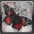 Darkana Tarot Icon
