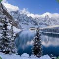 Winter Live Wallpaper HD Icon