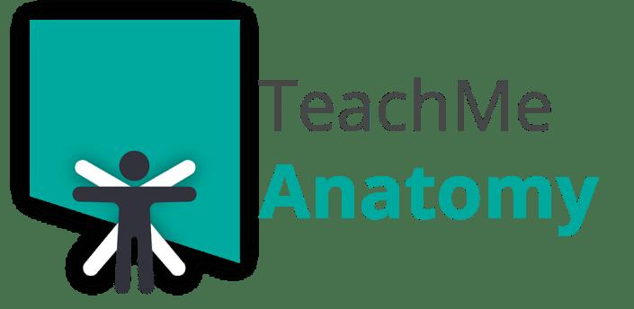 Teach Me Anatomy: 3D Human Body & Clinical Quizzes apk