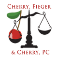 Class Action Lawyers Icon