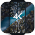 4K Wallpapers - Auto Wallpaper Changer Icon