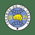 Taekwon-Do ITF Theory Icon
