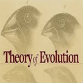 Theory of Evolution: A History of Controversy Icon