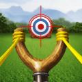 Catapult Championship Icon