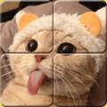 Healing Matching Puzzle Free Icon
