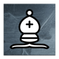 Perfect Chess Trainer Icon