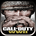 Call of Duty WWII Icon