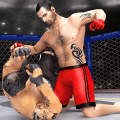 Karate Fighting Kung Fu Fighter Tiger MMA Fighting Icon