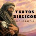 Textos Biblicos con Imagenes Icon