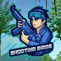 Shooting Birds Icon