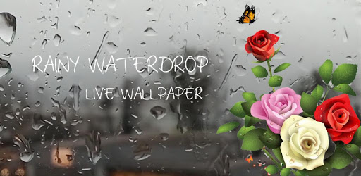 Rose Live Wallpaper with Waterdrops apk