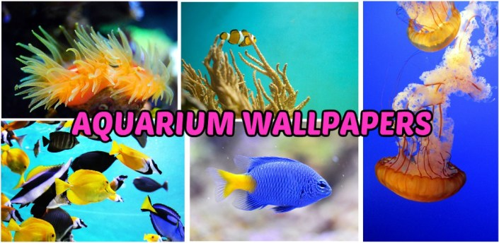 Aquarium Wallpapers apk