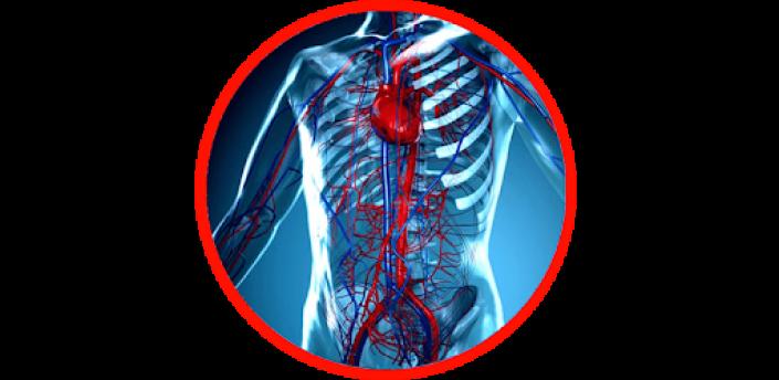 Anatomy - Physiology apk