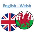 Welsh Translator Icon