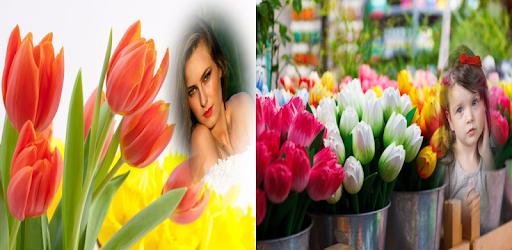 tulip  photo frames costume montage editor apk