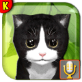 Talking Kittens your pet Icon