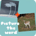 Picture the word! 2pics1word Icon