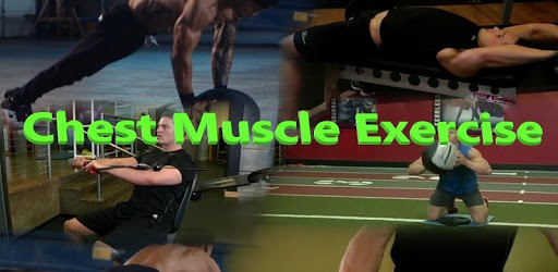 Chest Muscle Exercise apk