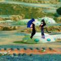 Goku battles of dragon Icon