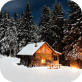 Winter Wallpaper HD : backgrounds & themes Icon