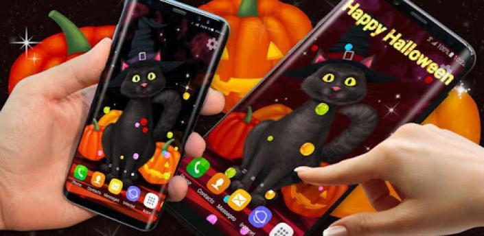 Halloween Wallpaper 🎃 Black Cat Live Wallpapers apk