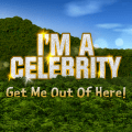 I'm A Celebrity Get Me Out Of Here! Icon