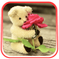 Teddy Bears live wallpaper Icon