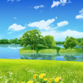 Nature Background Natural Wallpaper Icon