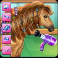 Horse Hair Salon Icon