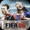 FIFA 06 Icon