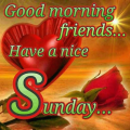 Happy Sunday: Greetings, GIF, SMS Messages Icon