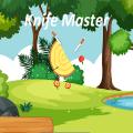 Knife Hit : Knife Strike Game Icon