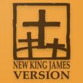Audio Bible - NKJV Audio Bible Icon