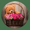Plush Teddy Bear Live wallpaper Icon