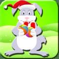 Bunny Christmas Icon