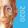 Human Anatomy Atlas 2020: Complete 3D Human Body Icon