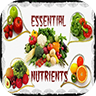 Essential Nutrients Icon
