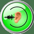 Tinnitus Describer Icon