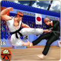 Karate King Fighter: Kung Fu 2018 Final Fighting Icon