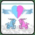 Horoscope ideal Compatibility Icon