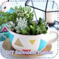 DIY Succulent Planter Icon