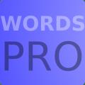 Words Pro Icon