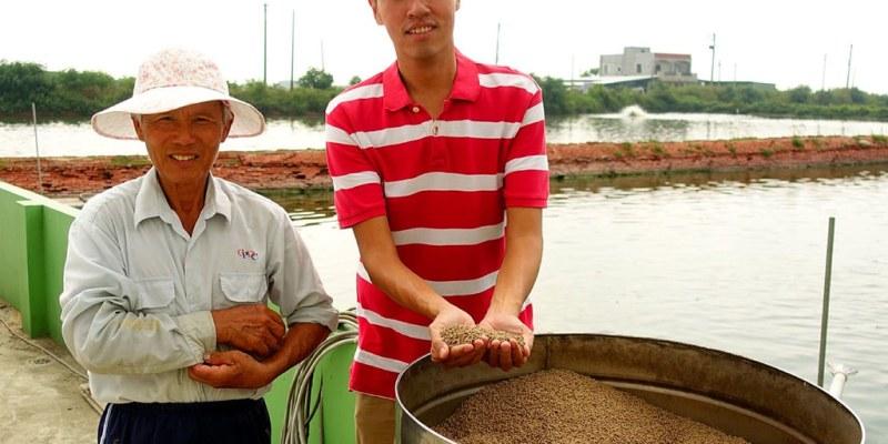 [台南學甲區] 無毒白蝦 - 用天然的環境與飼料養出最令人安心的無毒白蝦