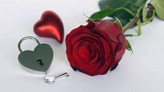 看懂10個愛情真相,你就能練習好好去愛