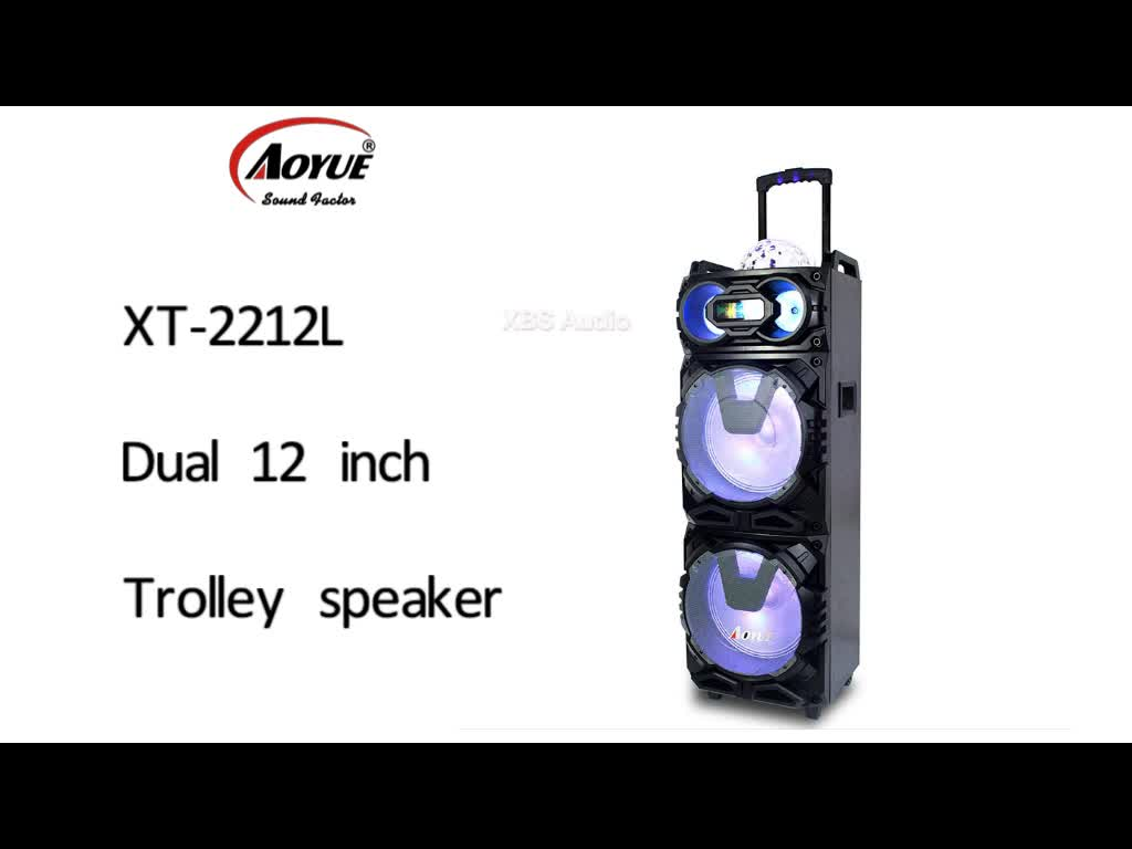 Aoyue Hot Dual 12 Inch 100w Stage Pa System Wireless Party Speaker With Disco Ball